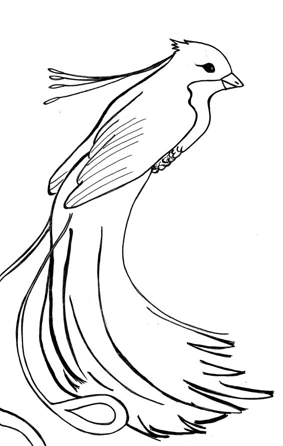 coloring pages of phoenix - photo#23