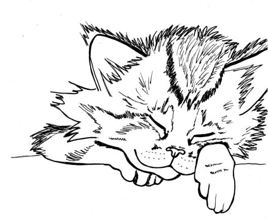 Sleepy kitten doodle for a Thursday