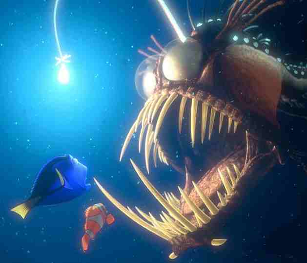 You may remember this guy from Finding Nemo, source
