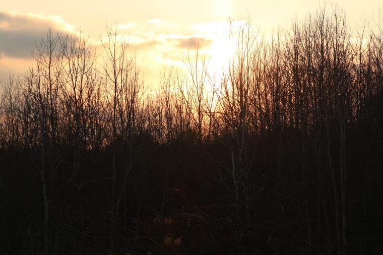 Here comes the sun, na na na naaa...