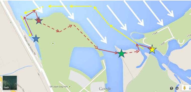 Fig 1.  The yellow star is home base.  The yellow arrows show our trip on the way out, stopping at the swamp (blue star). The red arrows show our return trip, ramming the shore (red star), portaging across the swamp (dotted red lines), and paddling across two stretches of water.  The second portage is denoted by a green star.