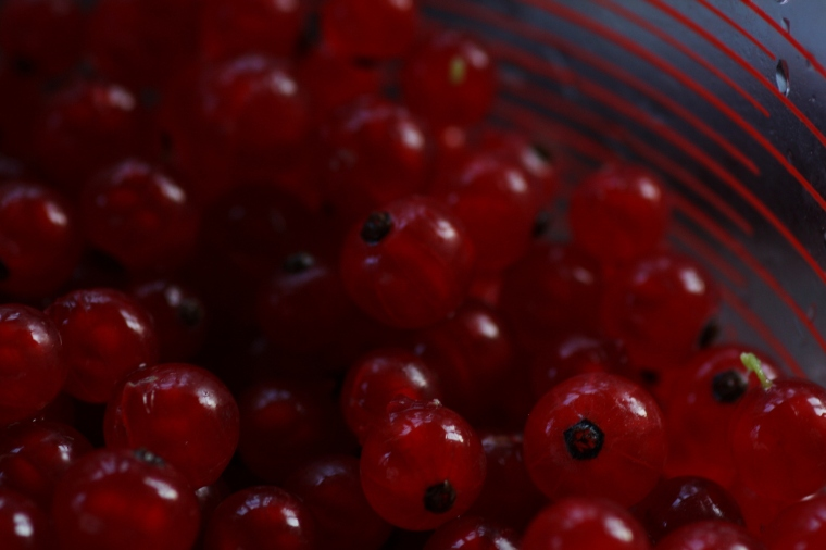 Mmm...red currants