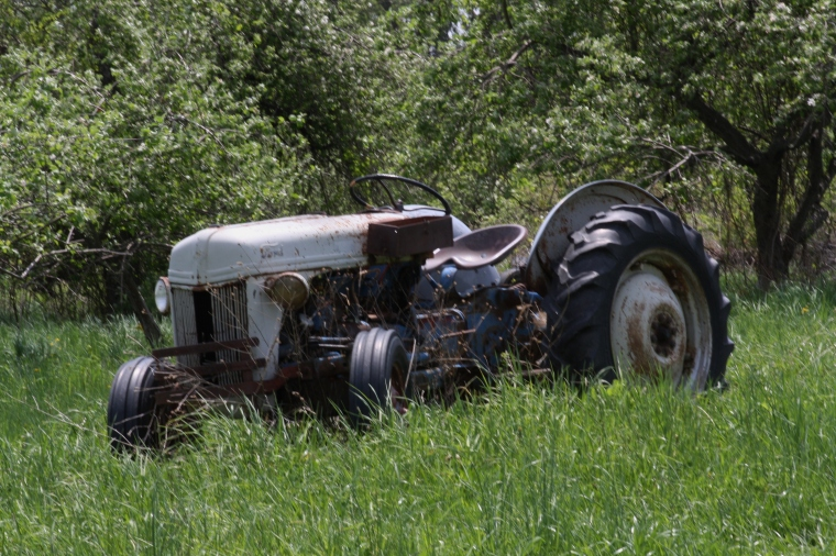 Ford Orchard Tractor : Orchard at tractors standingoutinmyfield